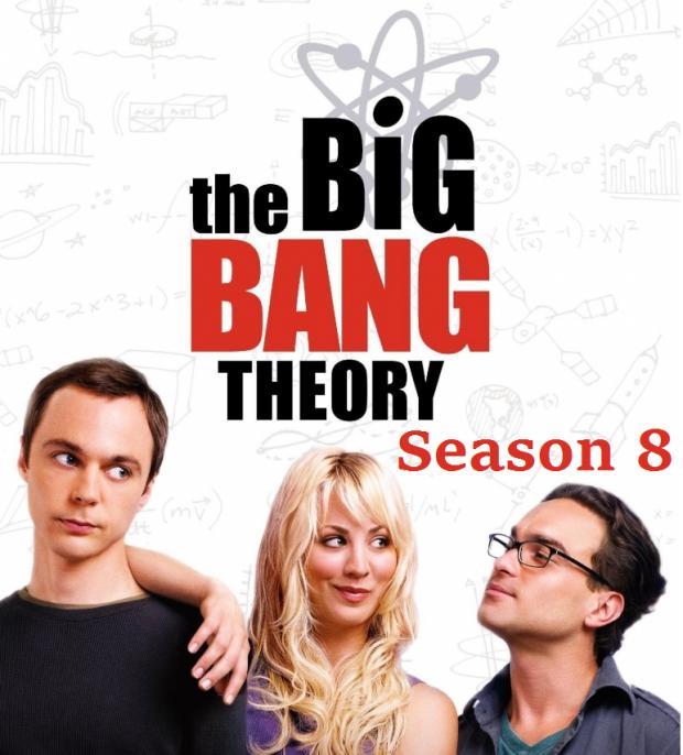 big bang theory 8